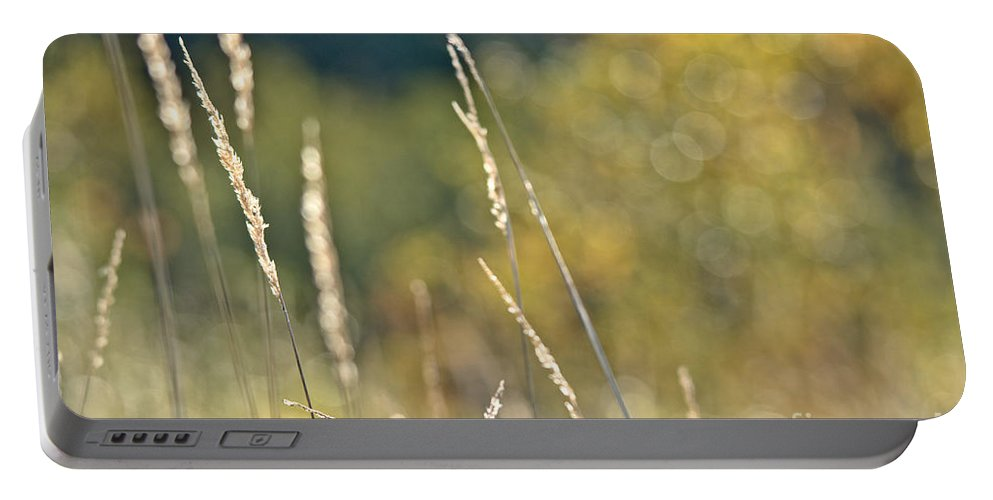 Portable Battery Charger featuring the photograph Weeds And Bokeh by Cheryl Baxter