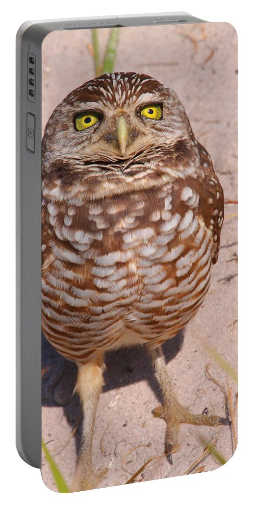 Owl Portable Battery Charger featuring the photograph Welcome To My Planet by Bruce J Robinson