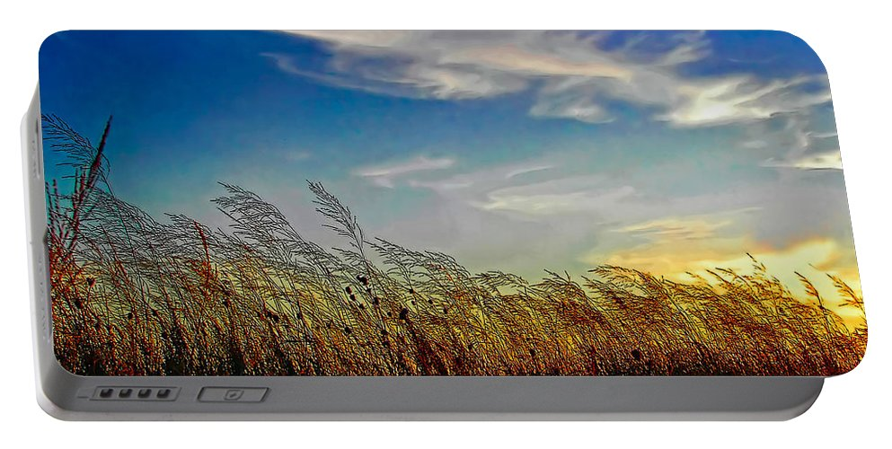 Evening Portable Battery Charger featuring the photograph West Wind by Steve Harrington