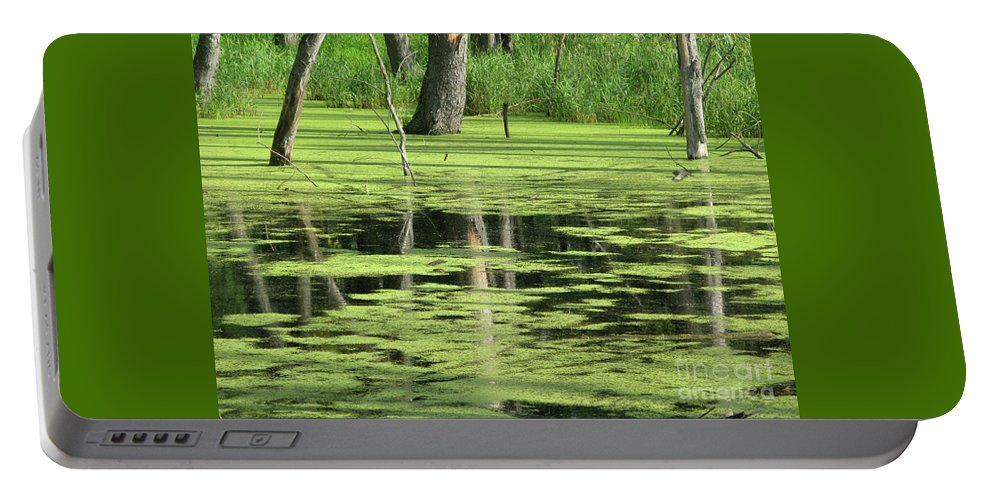Landscape Portable Battery Charger featuring the photograph Wetland Reflection by Ann Horn