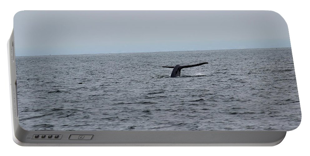 Whale Portable Battery Charger featuring the photograph Whale Tail 2 by Becca Buecher