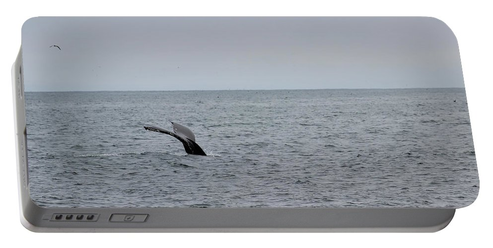 Whale Portable Battery Charger featuring the photograph Whale Tail 8 by Becca Buecher