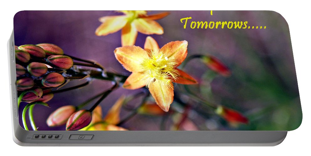 Portable Battery Charger featuring the photograph What You Do Today... by Bob Johnson