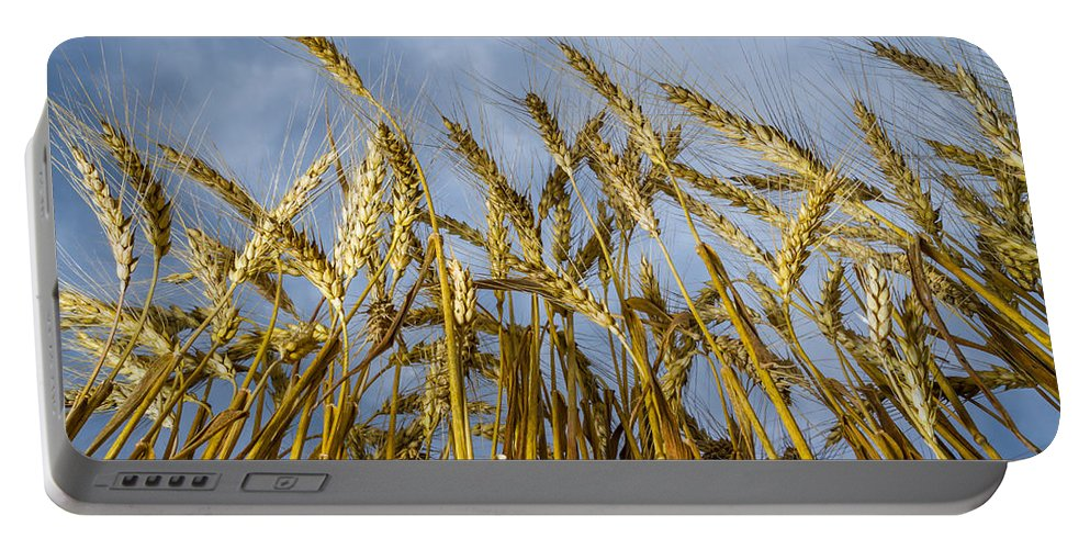 Art Portable Battery Charger featuring the photograph Wheat Standing Tall by Ron Pate