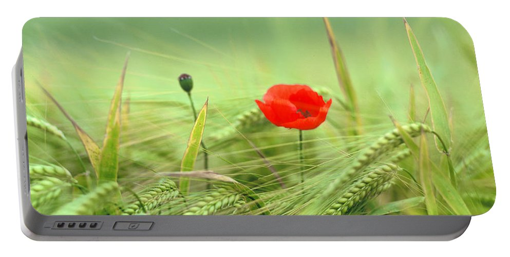 Uk Portable Battery Charger featuring the photograph Wheatfield Poppy by Christopher Rees