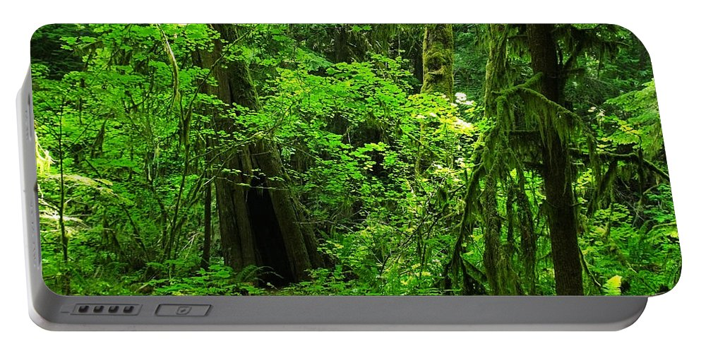 Green Portable Battery Charger featuring the photograph Where The Forest People Live Revised by Teri Schuster