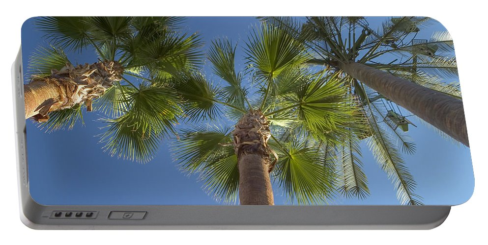 Palm Trees Portable Battery Charger featuring the photograph Which One Doesnt Belong 2 by Scott Campbell