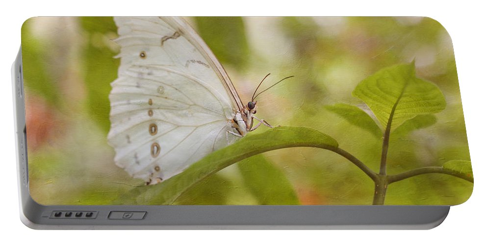 Butterfly Portable Battery Charger featuring the photograph White Beauty by Kim Hojnacki
