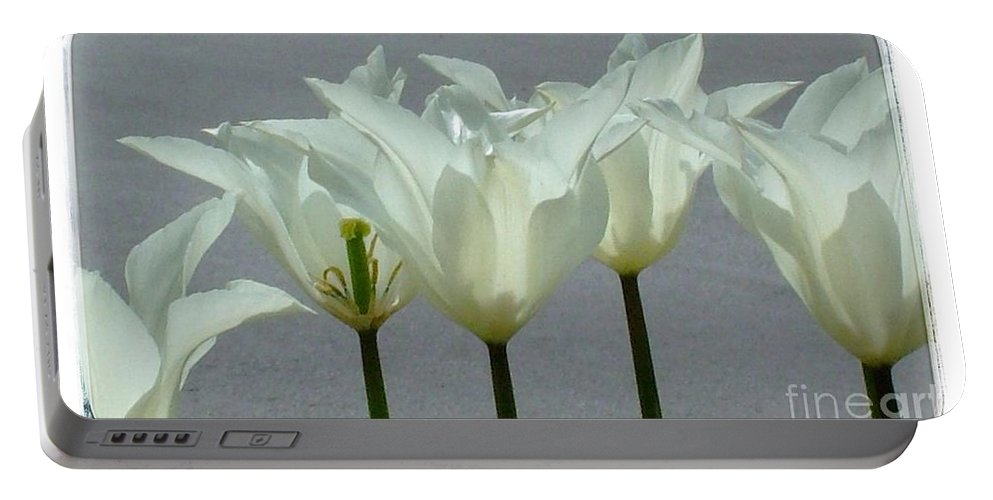 Tulips Portable Battery Charger featuring the photograph White Early Dawn Tulips White Bordered by Joan-Violet Stretch