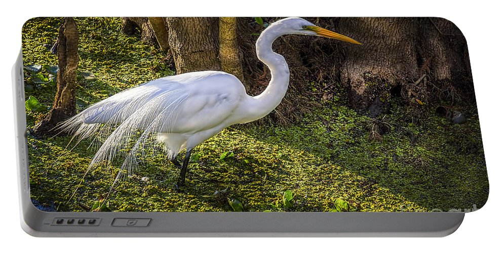 White Egret Portable Battery Charger featuring the photograph White Egret On The Hunt by Marvin Spates