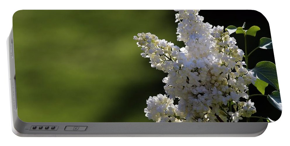 Lilac Portable Battery Charger featuring the photograph White Lilac by Kenny Glotfelty