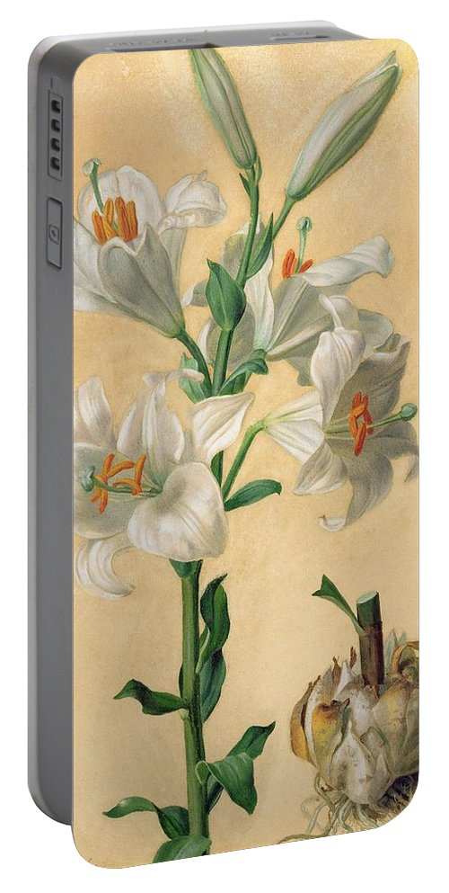 Floral Portable Battery Charger featuring the painting White Lily by Carl Franz Gruber