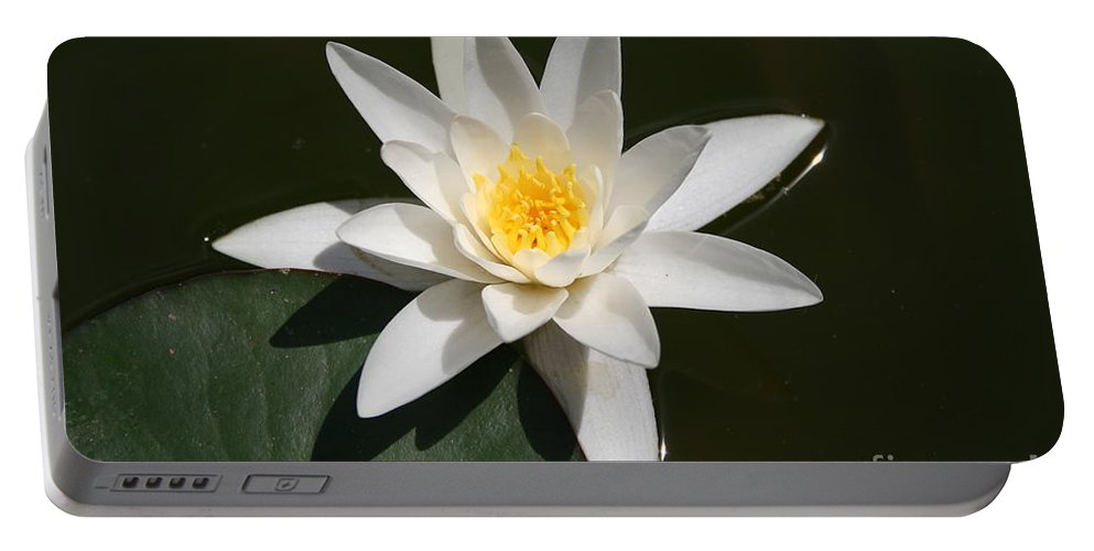 Waterlily Portable Battery Charger featuring the photograph My White Lotus by Christiane Schulze Art And Photography