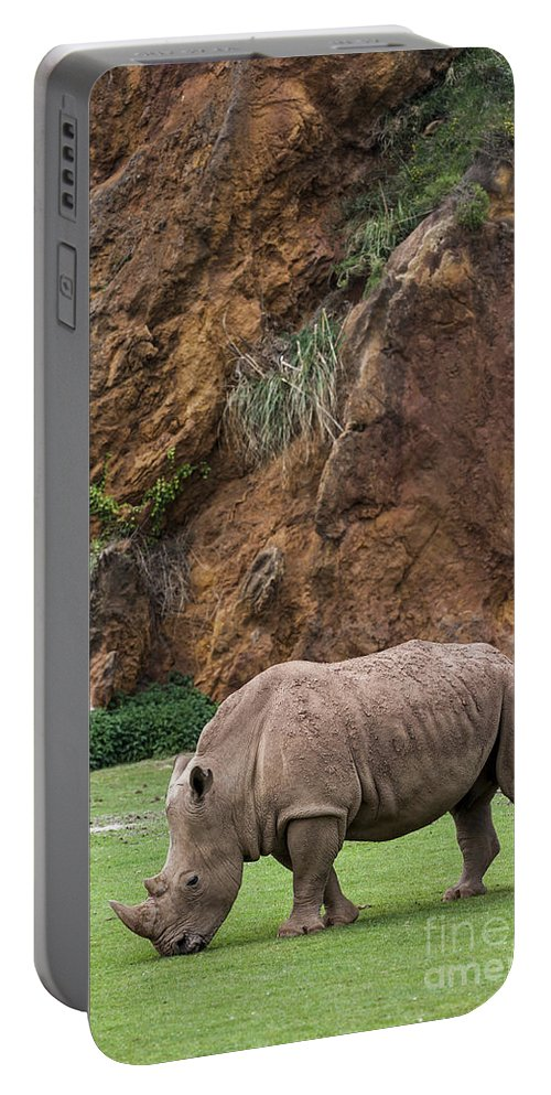 White Rhino Portable Battery Charger featuring the photograph White Rhino 13 by Arterra Picture Library