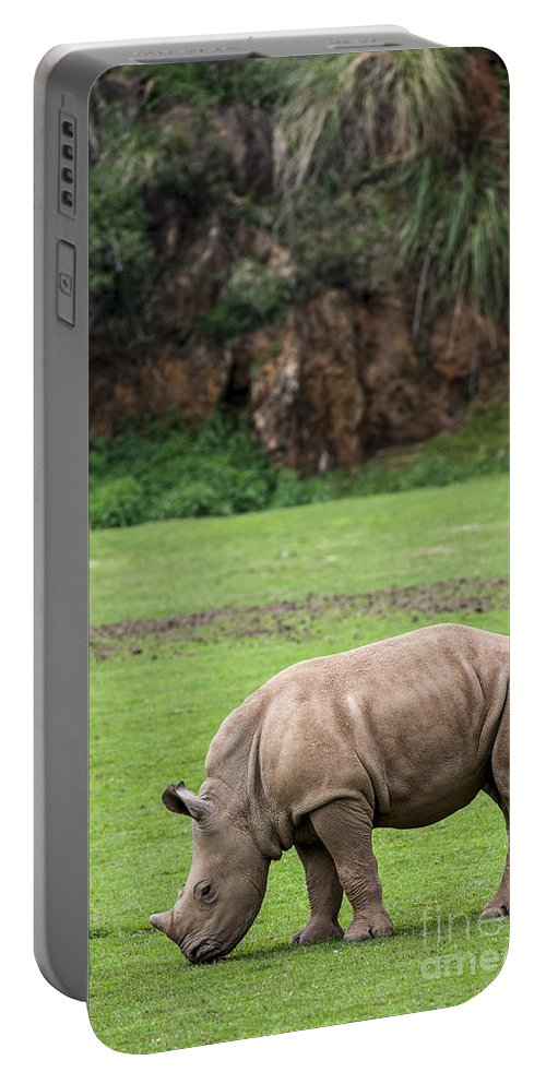 White Rhino Portable Battery Charger featuring the photograph White Rhino 14 by Arterra Picture Library