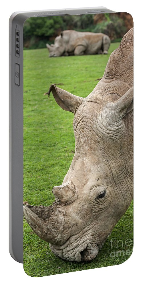 White Rhino Portable Battery Charger featuring the photograph White Rhino 15 by Arterra Picture Library