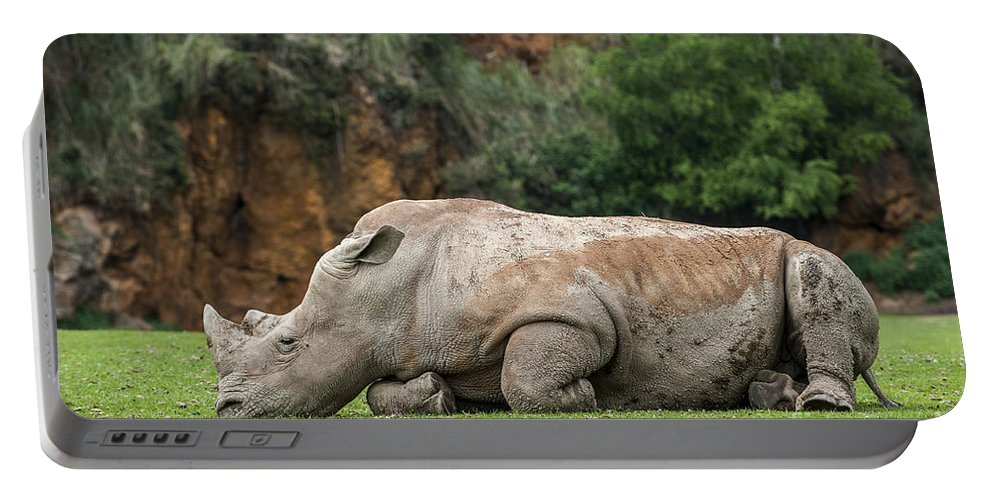 White Rhino Portable Battery Charger featuring the photograph White Rhino 16 by Arterra Picture Library