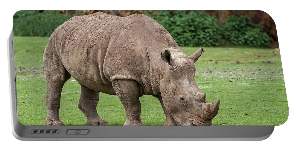 White Rhino Portable Battery Charger featuring the photograph White Rhino 5 by Arterra Picture Library