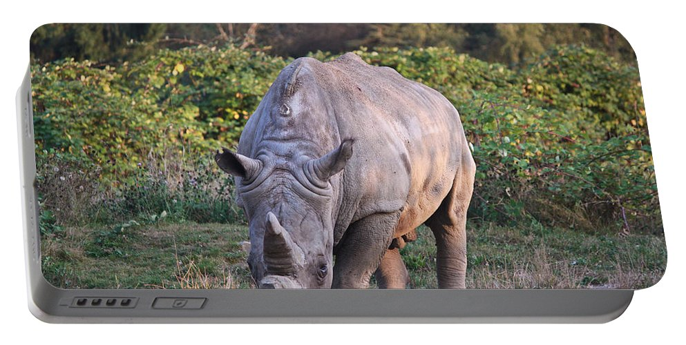 Rhino Portable Battery Charger featuring the photograph White Rhinoceros by Eti Reid