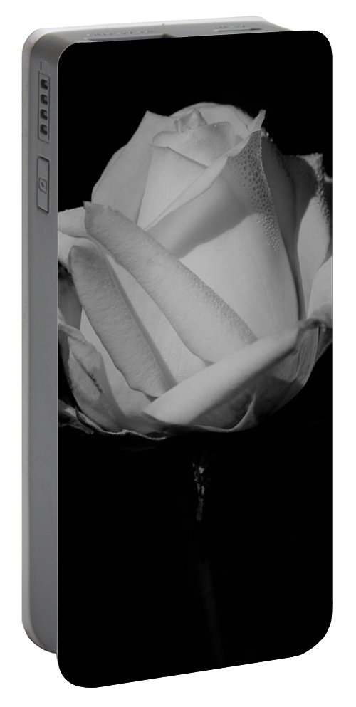 White Rose Portable Battery Charger featuring the photograph White Rose by Michelle Joseph-Long