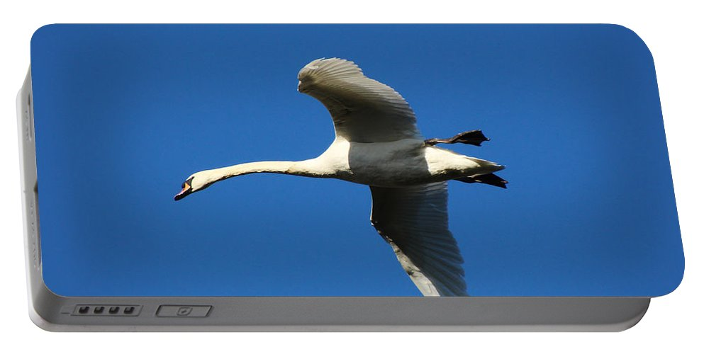 Swan Portable Battery Charger featuring the photograph White Swan In Flight by Tom Conway