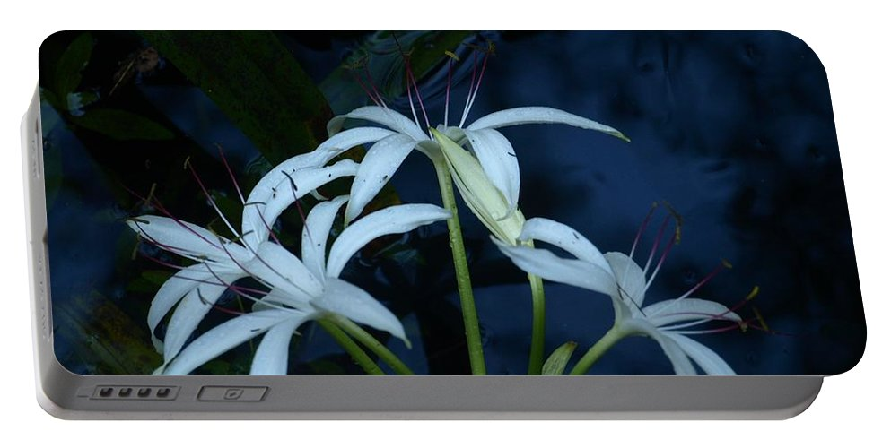 White Portable Battery Charger featuring the photograph White Water Flower by Jo Jurkiewicz