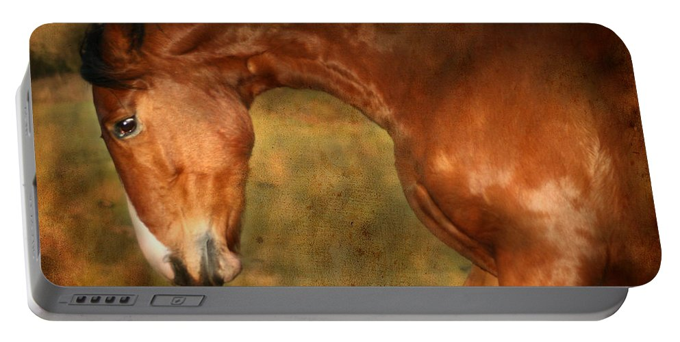Horse Portable Battery Charger featuring the photograph Wild by Angel Ciesniarska