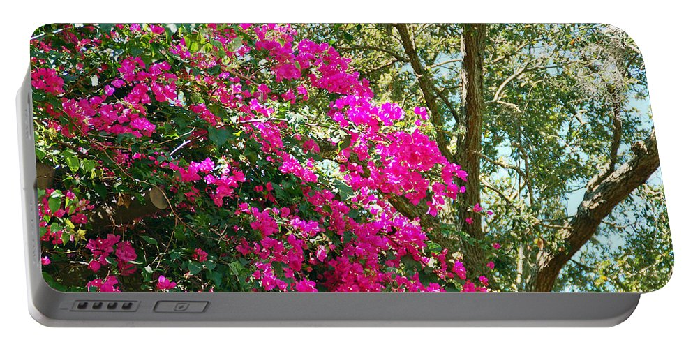 Bougainvillea Portable Battery Charger featuring the photograph Wild Bougainvillea by Aimee L Maher ALM GALLERY