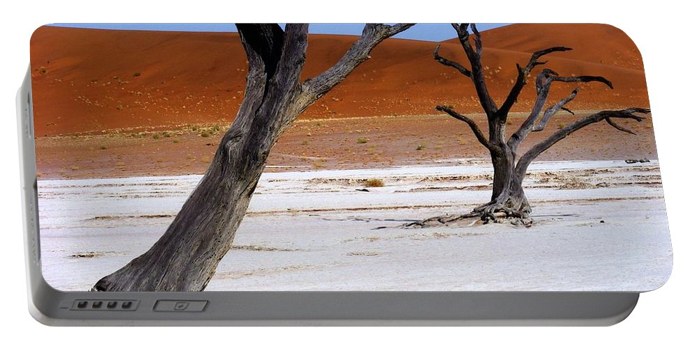 Trees Portable Battery Charger featuring the photograph Wild Dead Vlei by Noa Yerushalmi