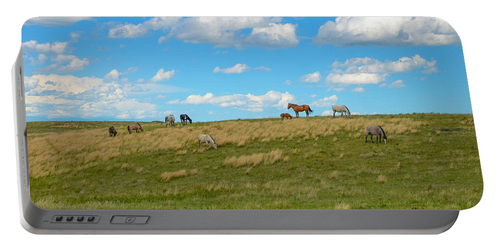 Horses Portable Battery Charger featuring the photograph Wild Horses by Gales Of November