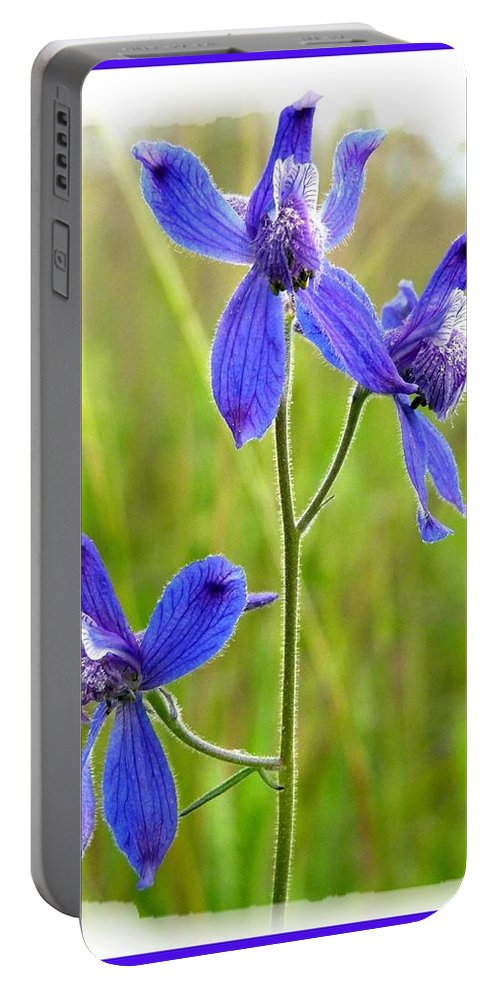 Wild Larkspurs Portable Battery Charger featuring the photograph Wild Larkspurs by Will Borden