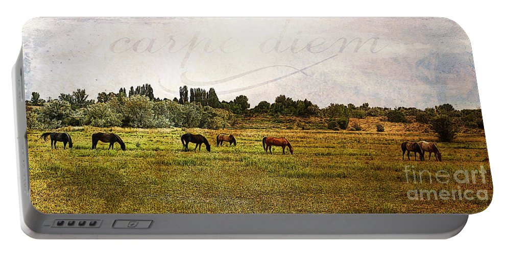 Animal Portable Battery Charger featuring the photograph Wild Mustangs Carpe Diem by Janice Pariza