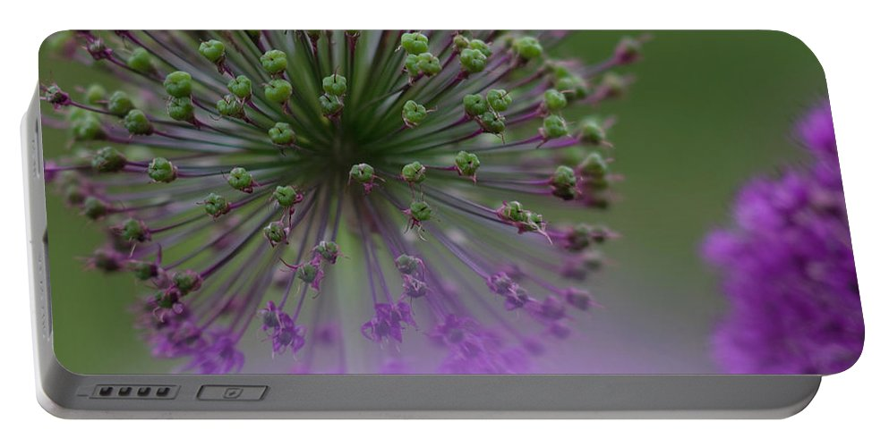 Allium Portable Battery Charger featuring the photograph Wild Onion by Heiko Koehrer-Wagner
