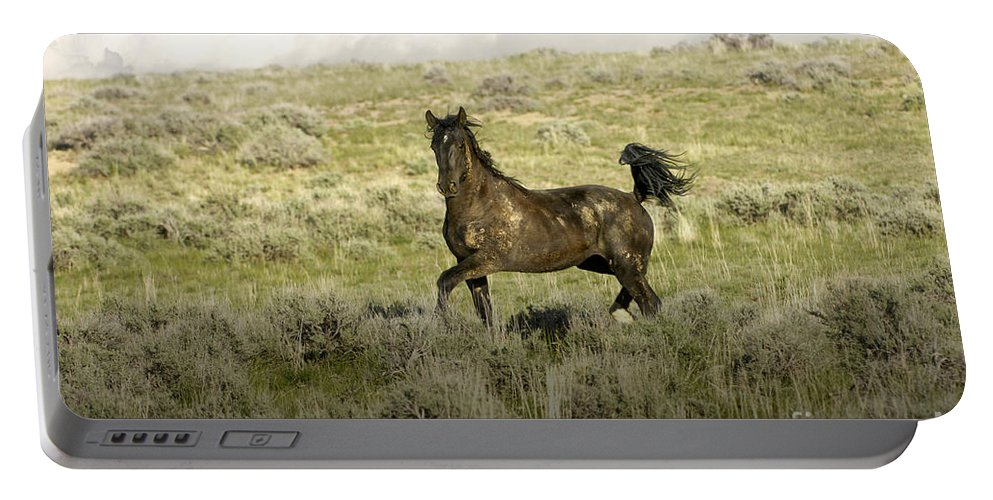 Wild Mustang Horse Portable Battery Charger featuring the photograph Wild Pride by Wildlife Fine Art