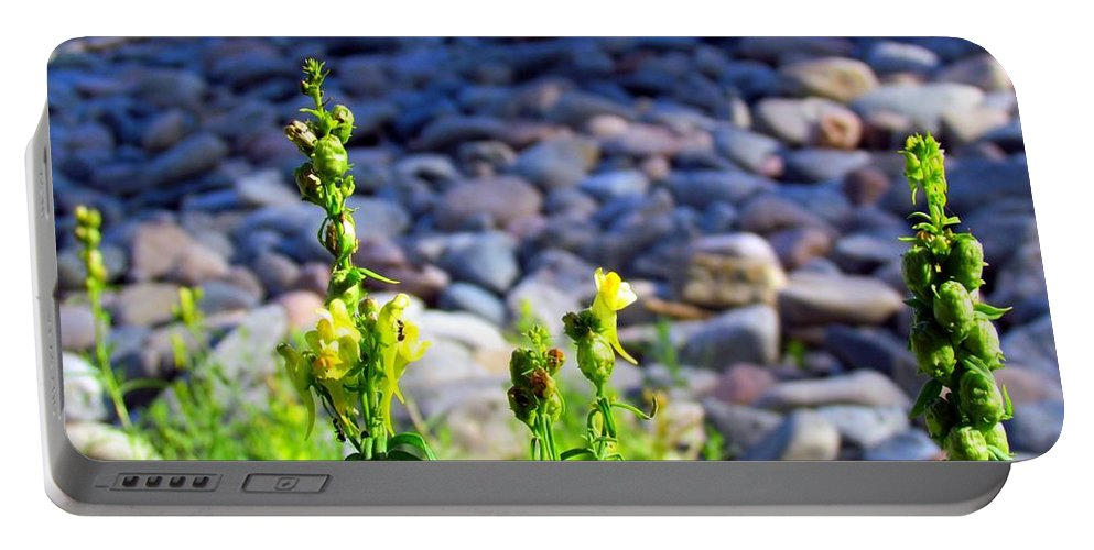 Wild Snapdragons Portable Battery Charger featuring the photograph Wild Snapdragons by Elizabeth Dow