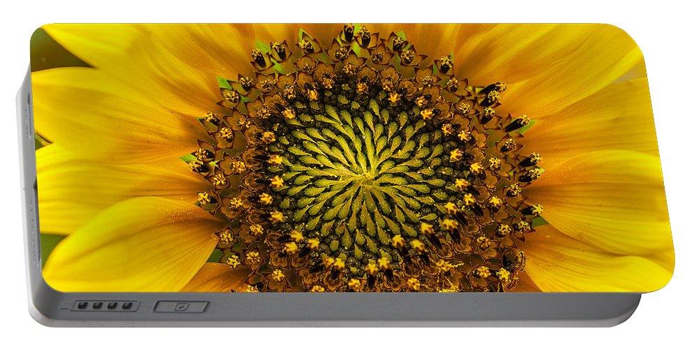 Wild Sunflower Photograph Portable Battery Charger featuring the photograph Wild Sunflower by Mae Wertz