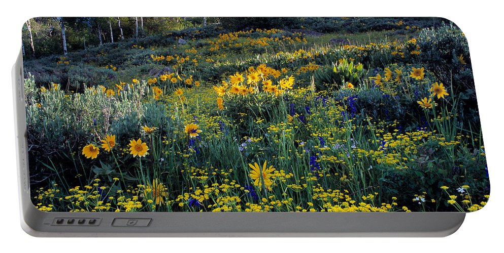 Spring Flowers Portable Battery Charger featuring the photograph Wildflower Hillside by Leland D Howard