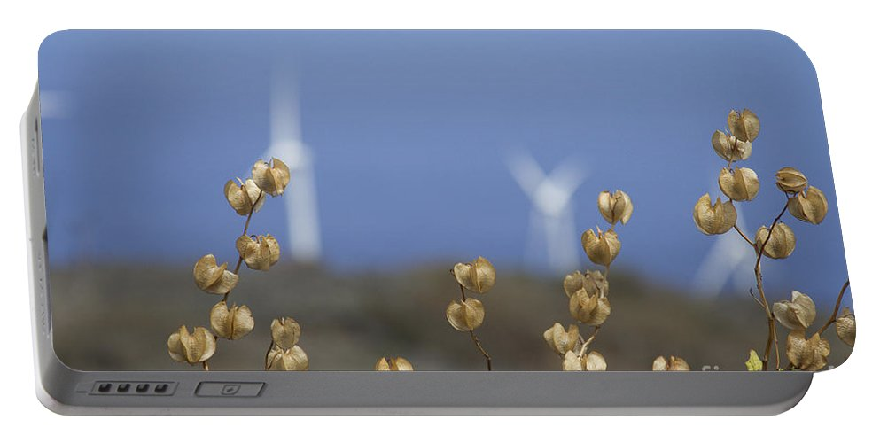 Portable Battery Charger featuring the photograph Wildflowers And Auwahi Wind Towers Kahikinui Maui Hawaii by Sharon Mau