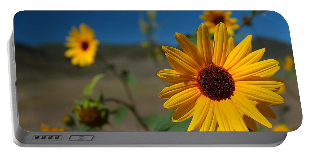 Wildflowers Portable Battery Charger featuring the photograph Wildflowers by Richard Cheski
