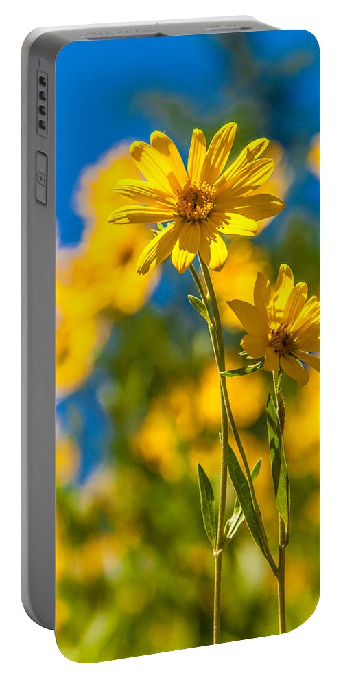 Flowers Portable Battery Charger featuring the photograph Wildflowers Standing Out by Chad Dutson