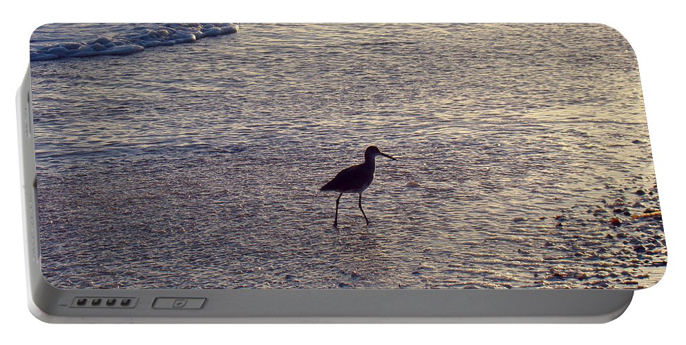 Willet Portable Battery Charger featuring the photograph Willet In The Waves by Nancy L Marshall