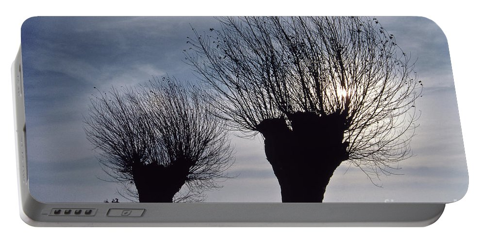 Heiko Portable Battery Charger featuring the photograph Willow Trees In Winter by Heiko Koehrer-Wagner