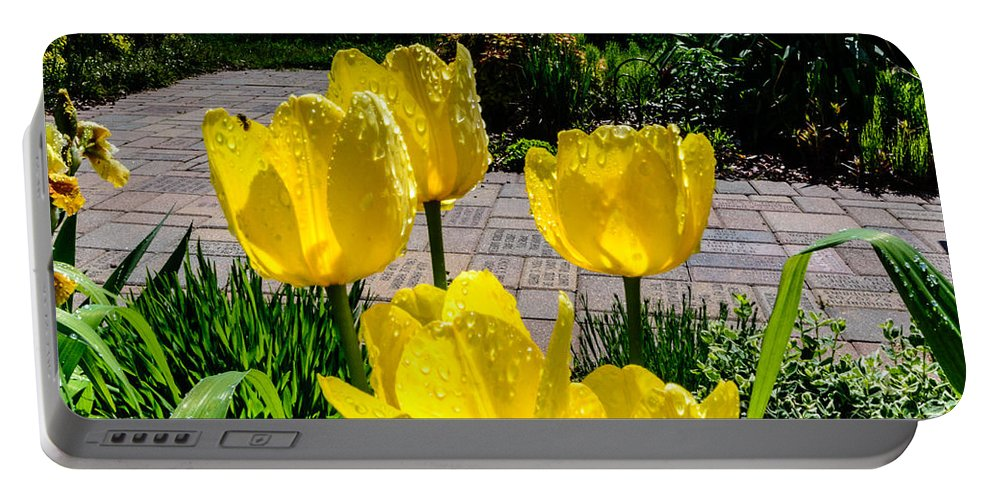 Flower Portable Battery Charger featuring the photograph Wind Point Tulips by Randy Scherkenbach