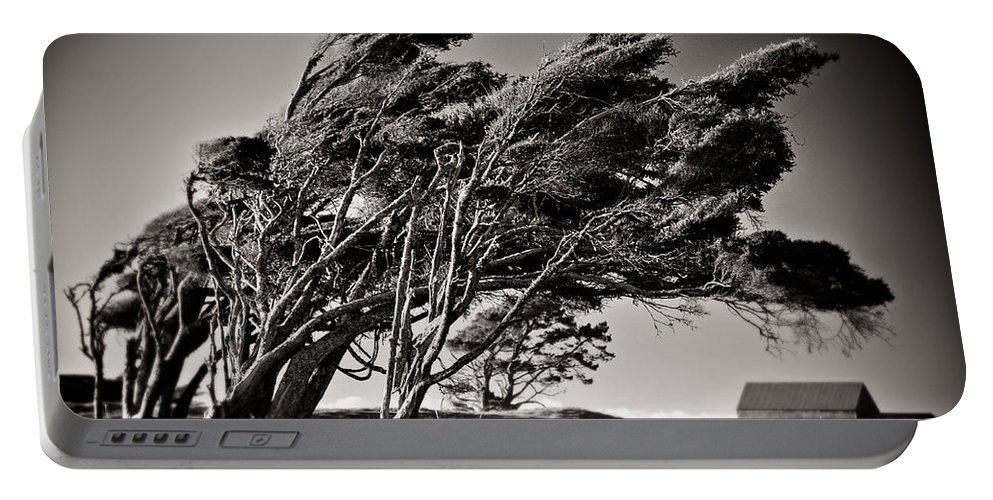Windswept Trees Portable Battery Charger featuring the photograph Windswept by Dave Bowman