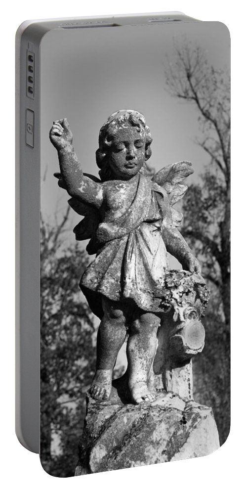 Winged Portable Battery Charger featuring the photograph Winged Gril 7 by Douglas Barnett