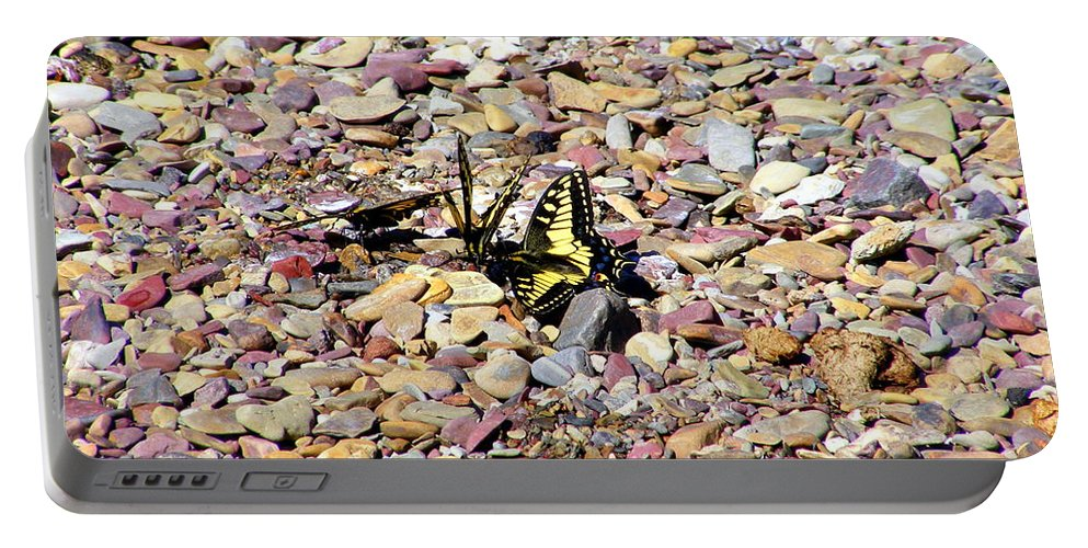 Rocks Portable Battery Charger featuring the photograph Winged Trio by Mark Hudon