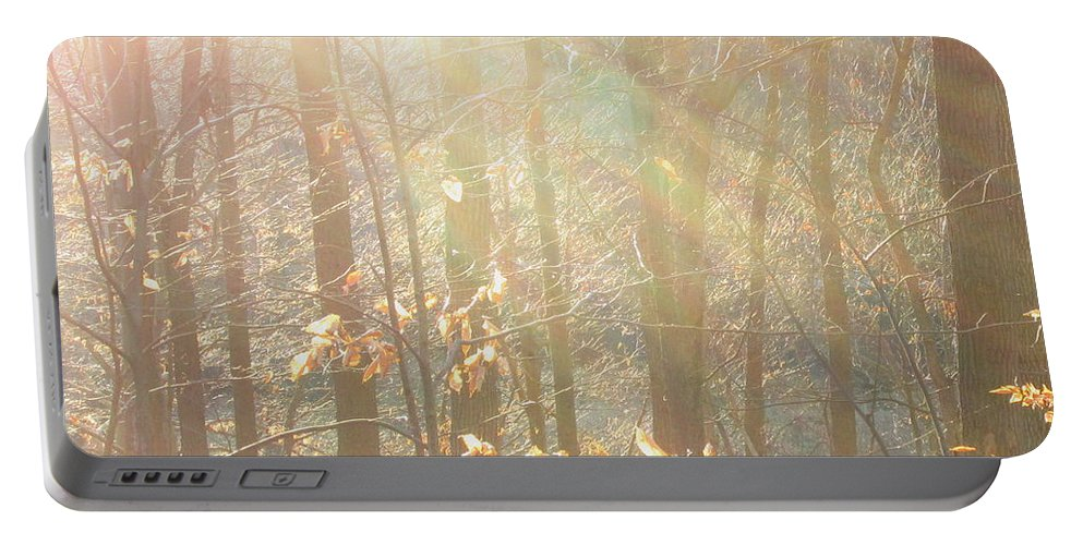Sun Beams Light Through Trees Light Beams Natural Lightscapes Sun Rays Tree Light Winter Woodland Winter Landscapes Winter Forest Forestscapes Arborscapes Treescapes Portable Battery Charger featuring the photograph Winter Arbor Light by Joshua Bales