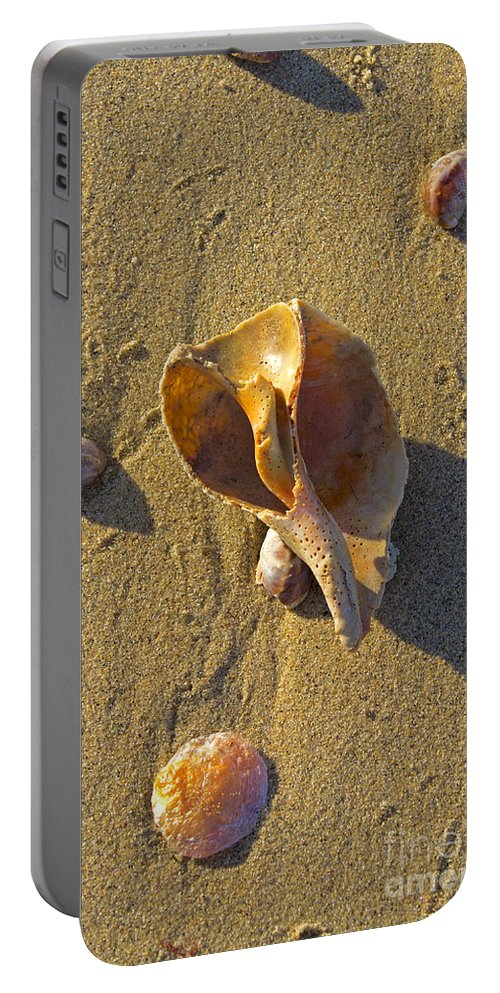 Shell Portable Battery Charger featuring the photograph Winter Beach by Joe Geraci