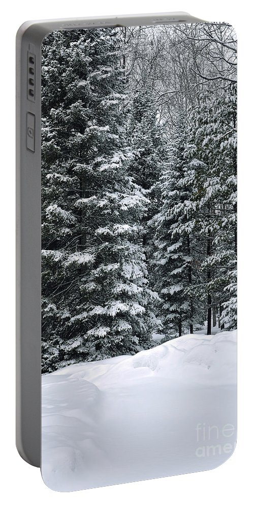 Winter Scene Photo Portable Battery Charger featuring the photograph Winter Bliss by Gwen Gibson