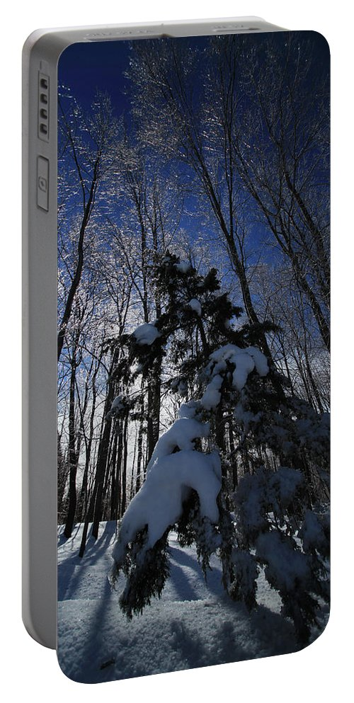 Winter Portable Battery Charger featuring the photograph Winter Blue by Karol Livote